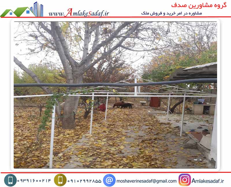 فروش باغ 1 هکتاری در شهرک مسعودیه