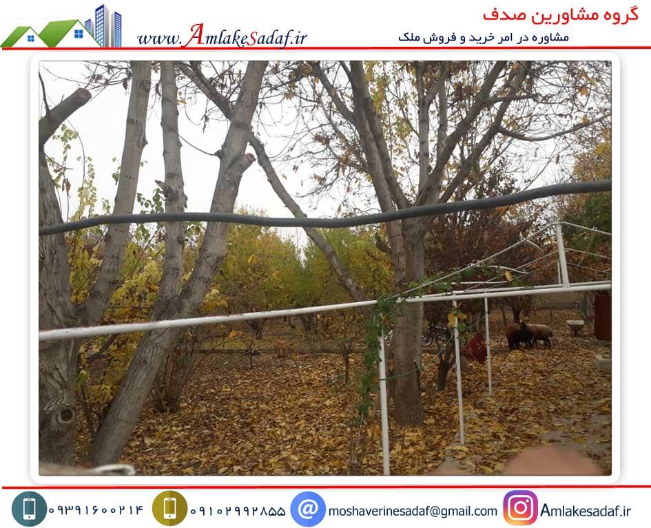 فروش زمین 800 متری سند دار حومه کرج (مسعودیه)