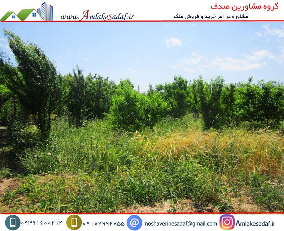 فروش باغچه  ۵۰۰ متری حومه هشتگرد قلعه آذری