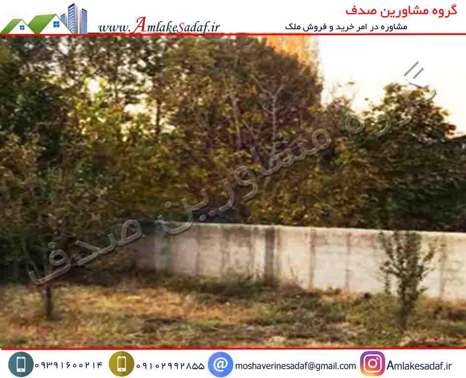 فروش باغچه 350 متری در تهراندشت